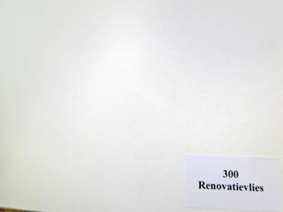 Azet renovatiebehang 300 glad VG 50mtr